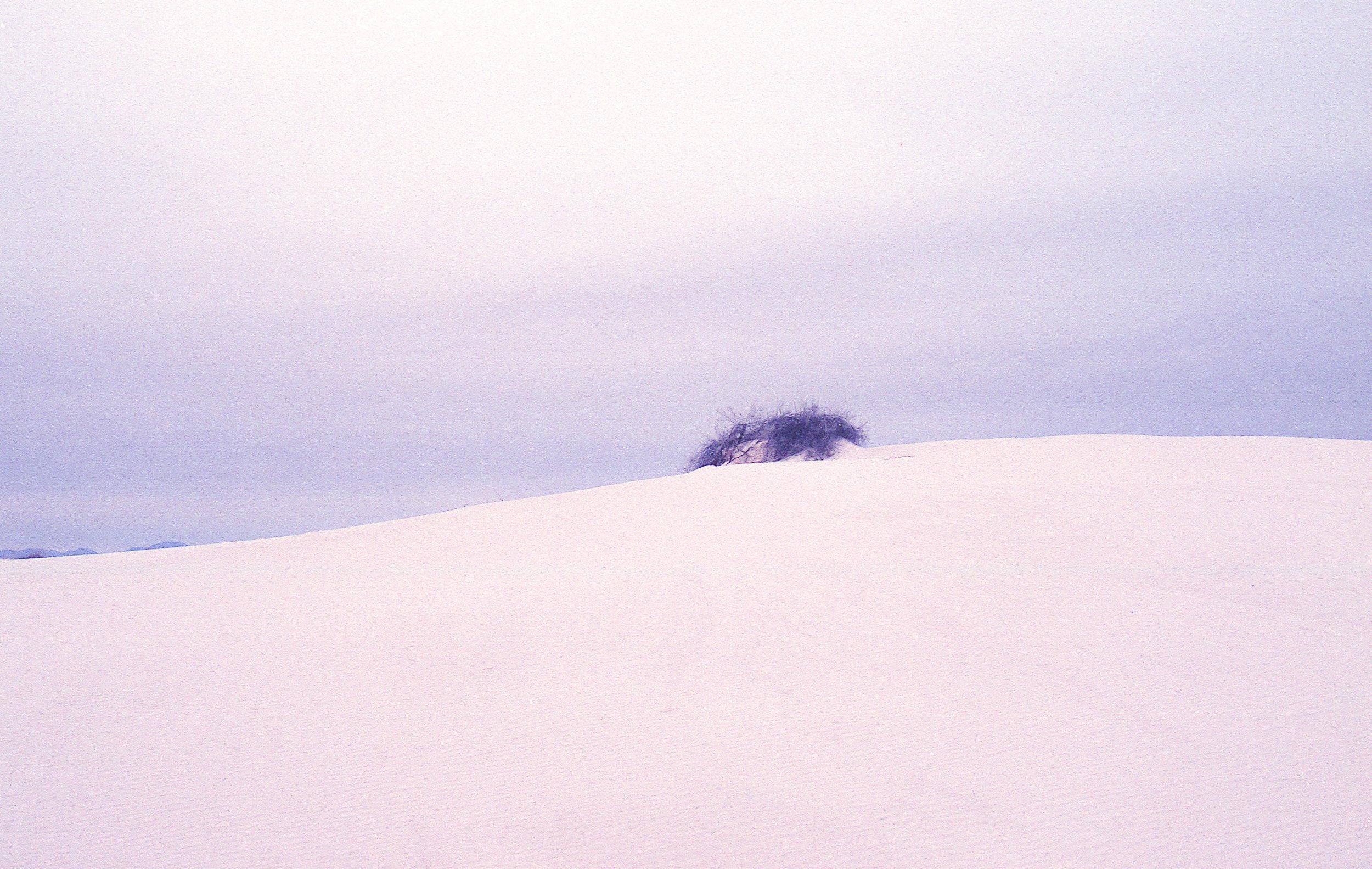 winter-upload -9.jpg