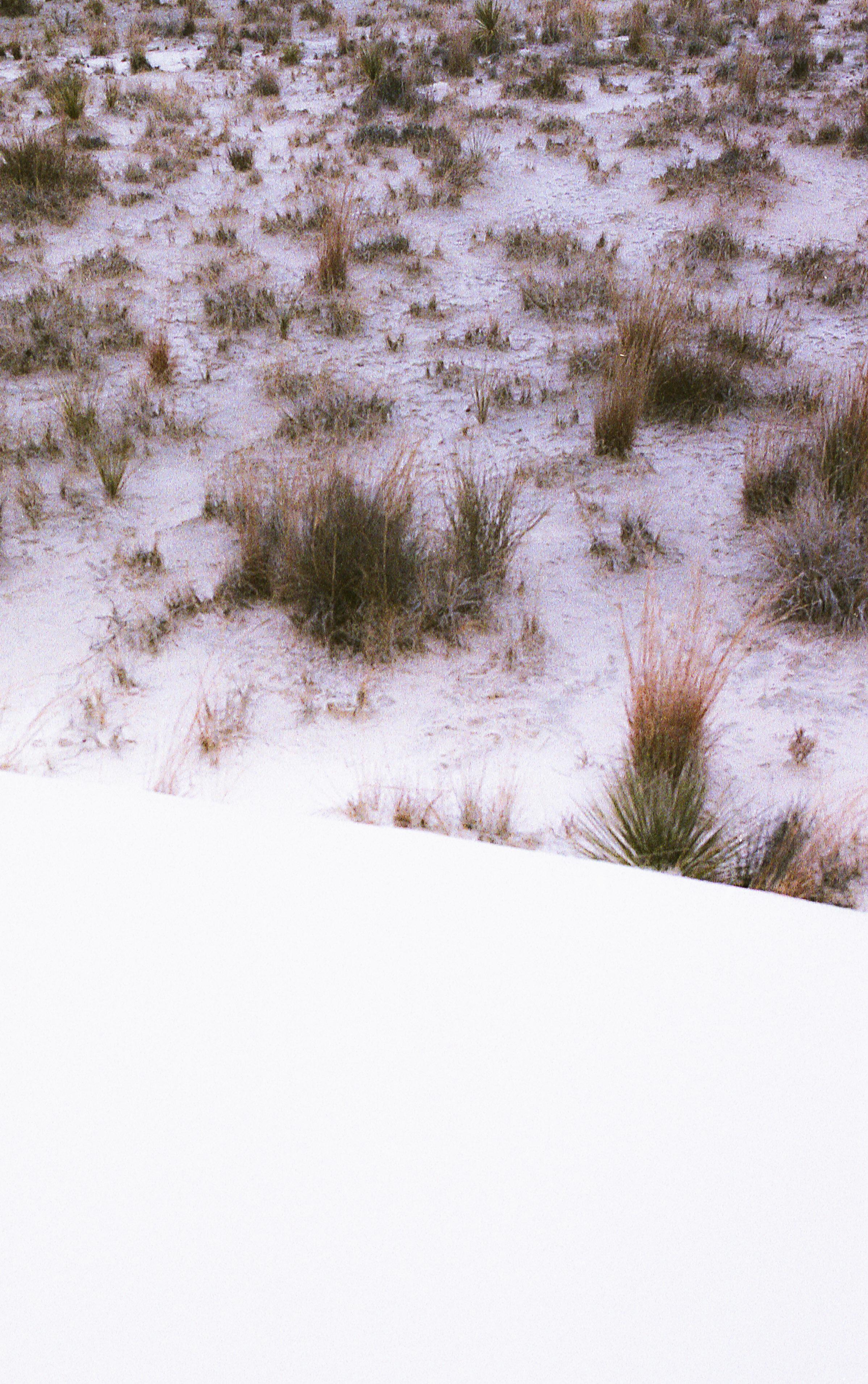 winter-upload -16.jpg