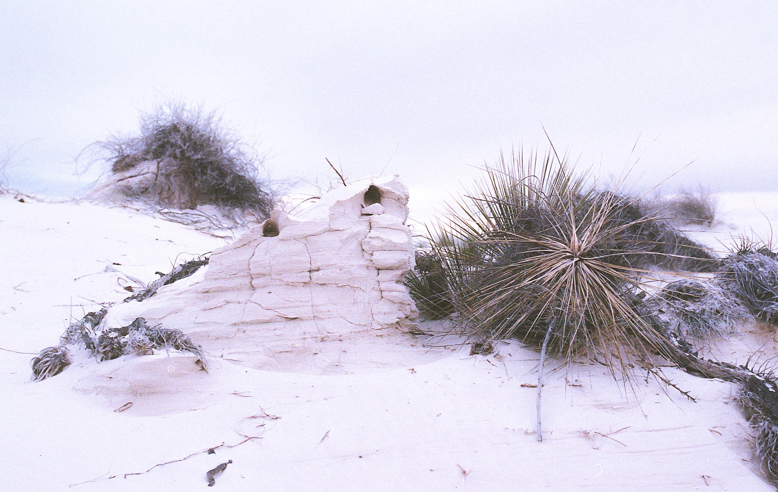 winter-upload -15.jpg