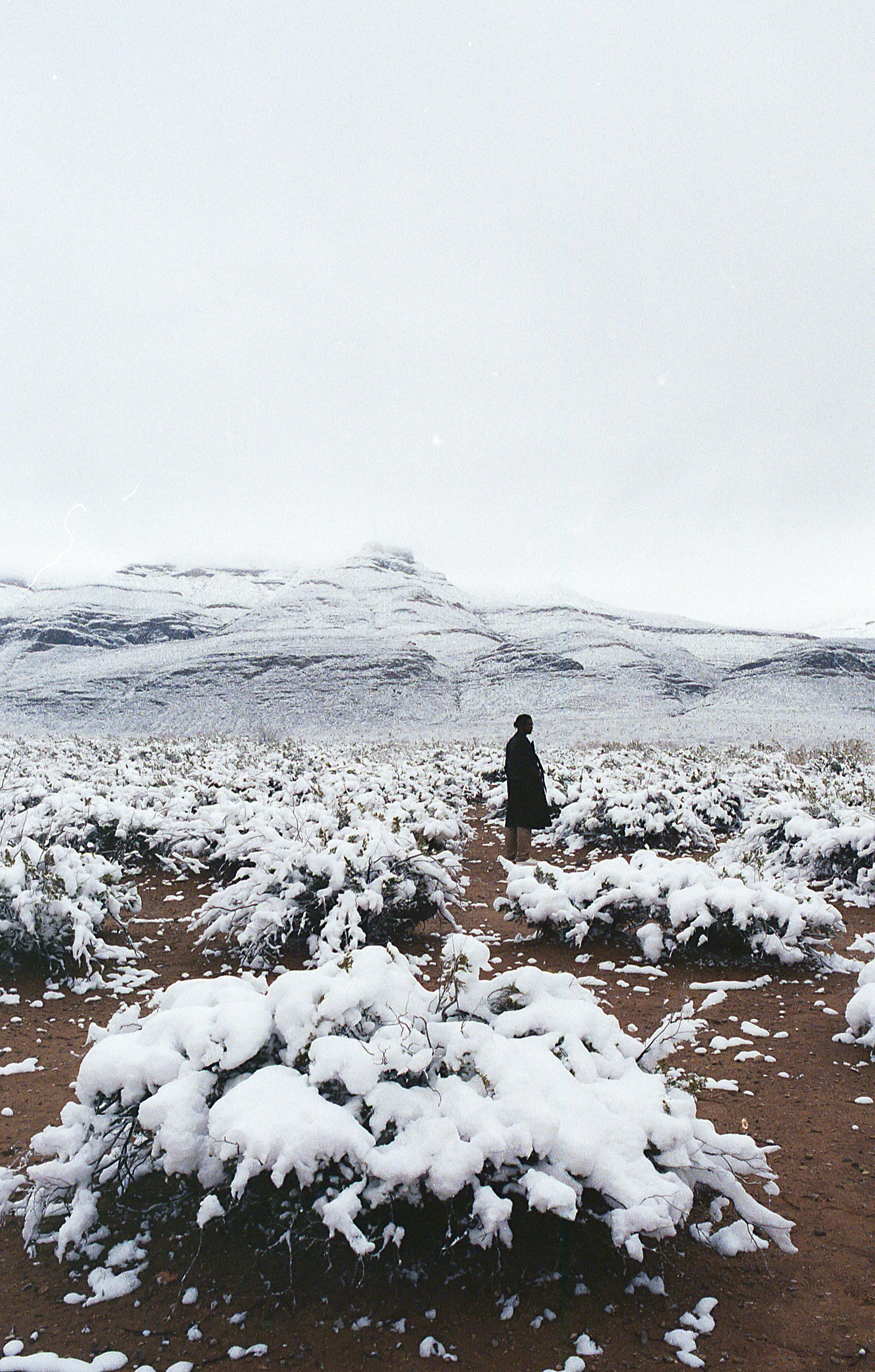 winter-upload -40.jpg