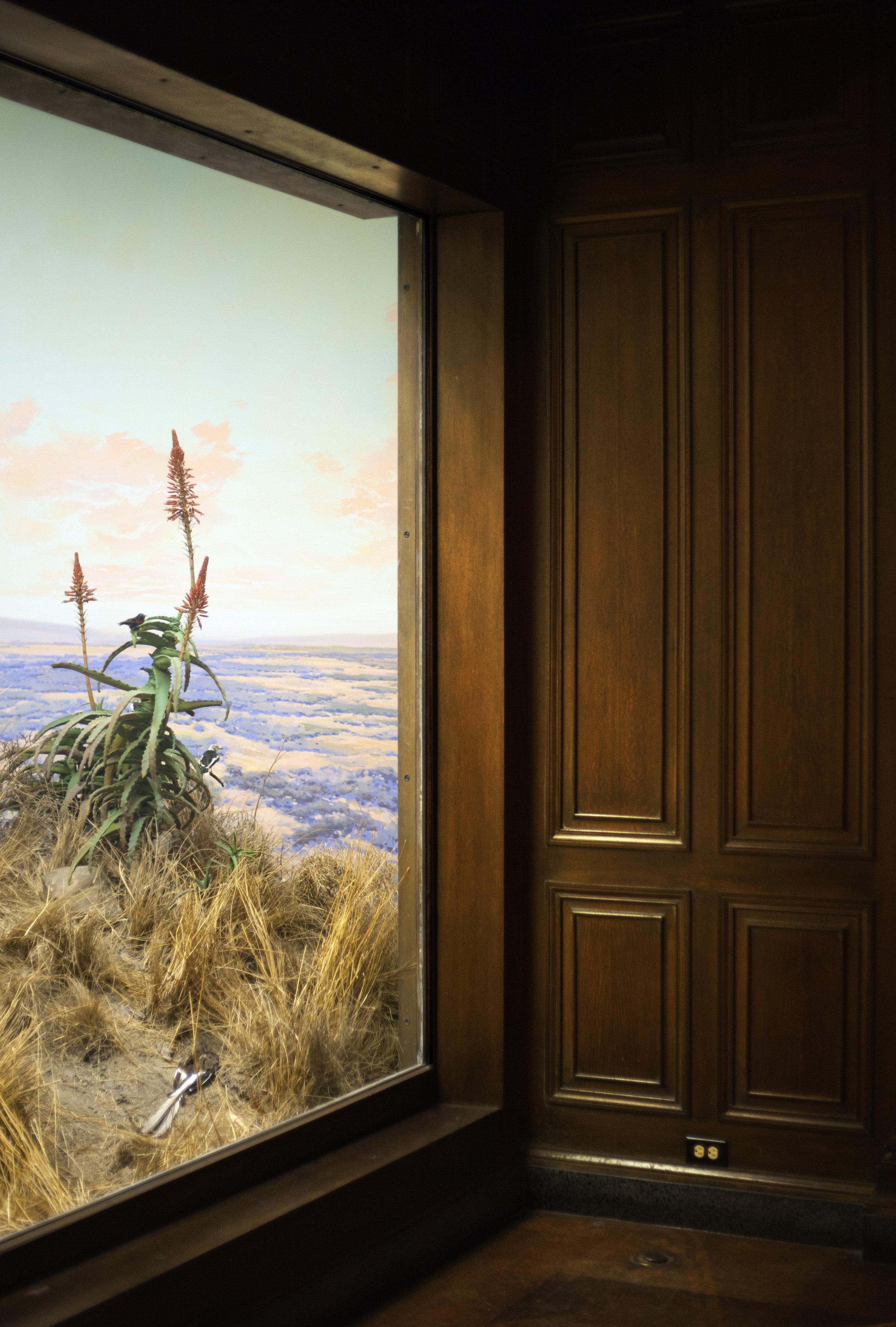 "Plateau (Laikipia, Kenya), 2012, Archival Inkjet Print, 38"" x 46"" inches"