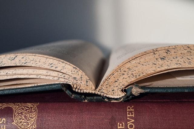book-reading-literature-classics-159833.jpg