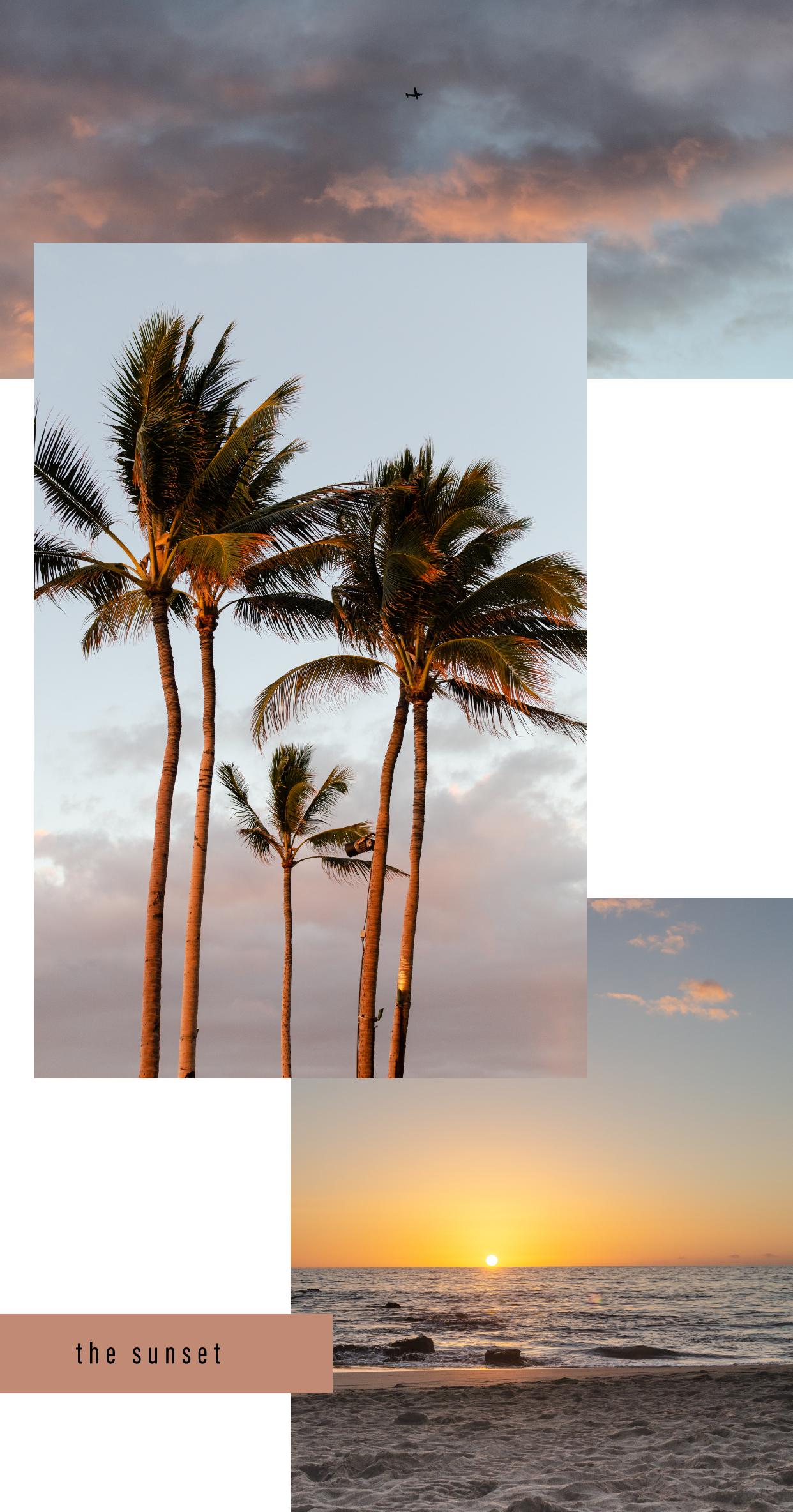 Bottega-x-Hawaii_The-Sunset.png