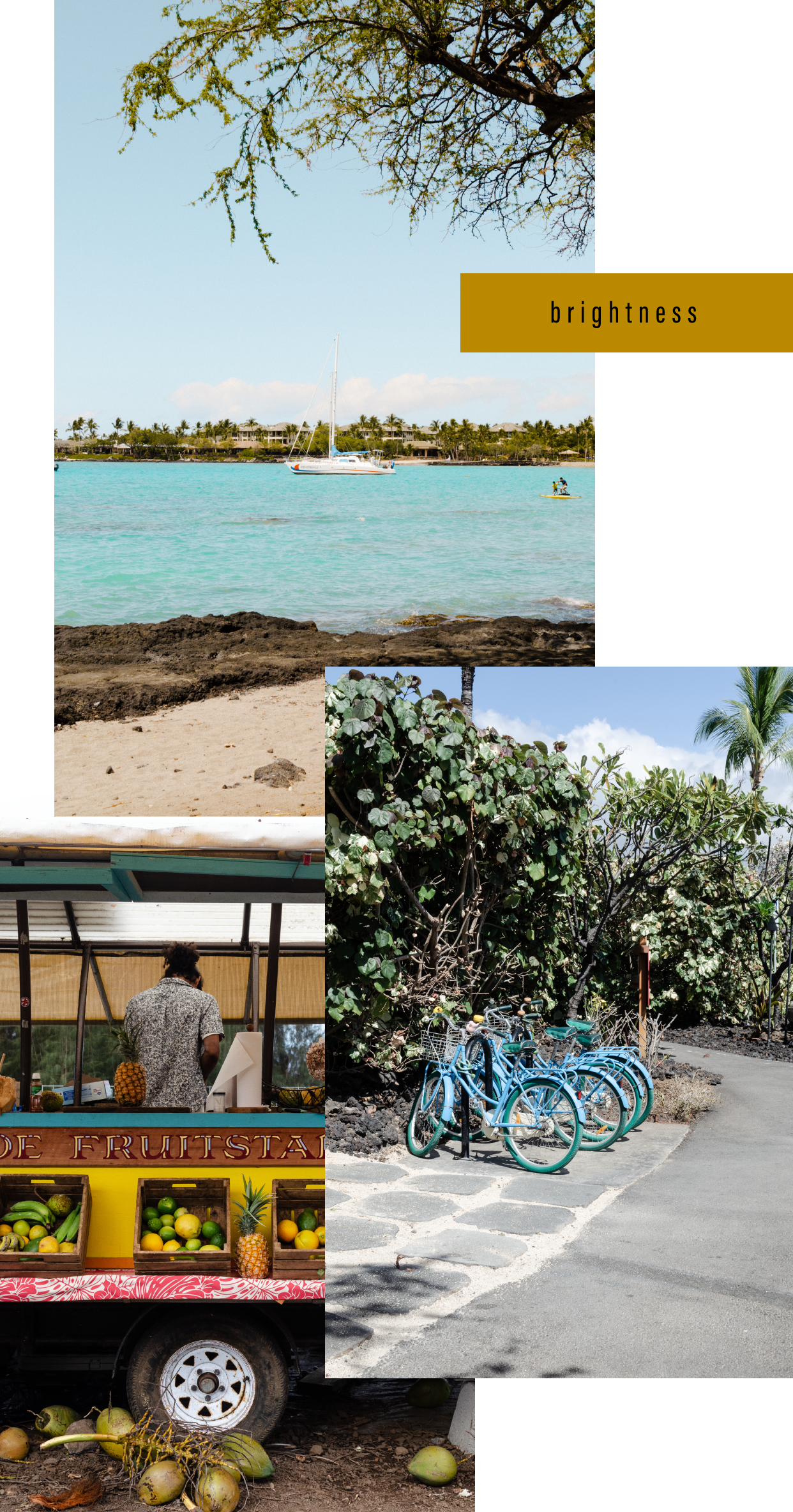 Bottega-x-Hawaii_Brightness.png