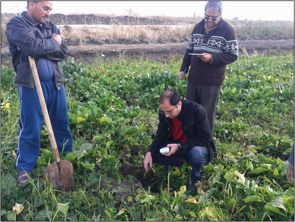 Salinity measurements conducted by using WET Sensor (Egypt)