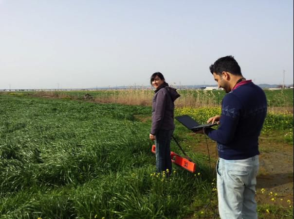 Field measurements (Portugal)