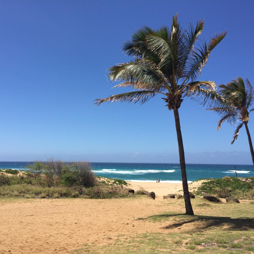 My drive to Polihale Beach in Kauai -