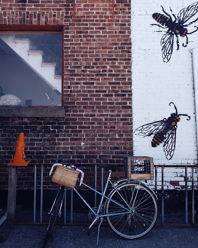 The Bicycle Basket: featuring Lydia's cute bike ( @lydeia ) & our beloved hive