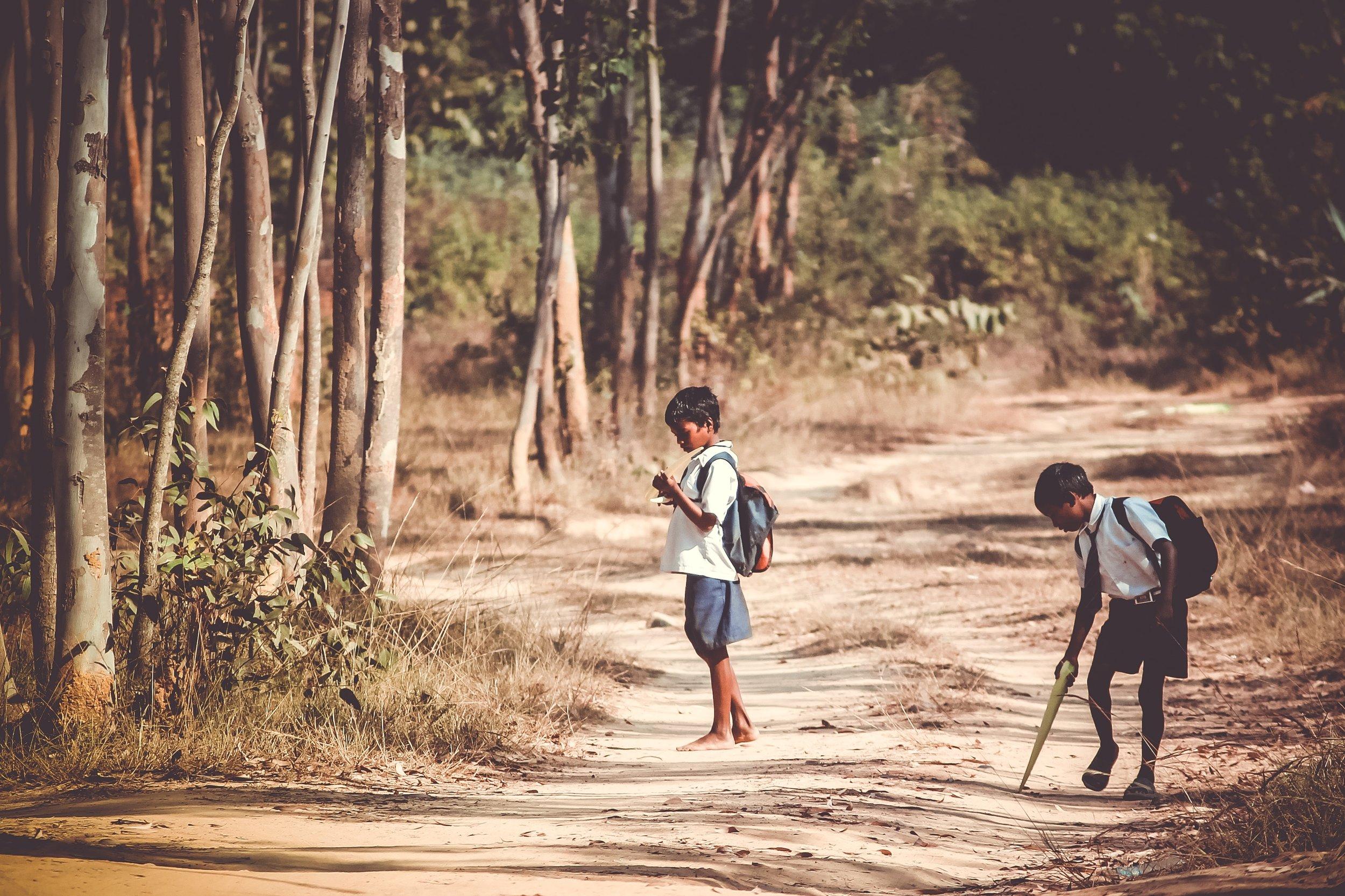 Photo by  Himesh Kumar Behera  on  Unsplash