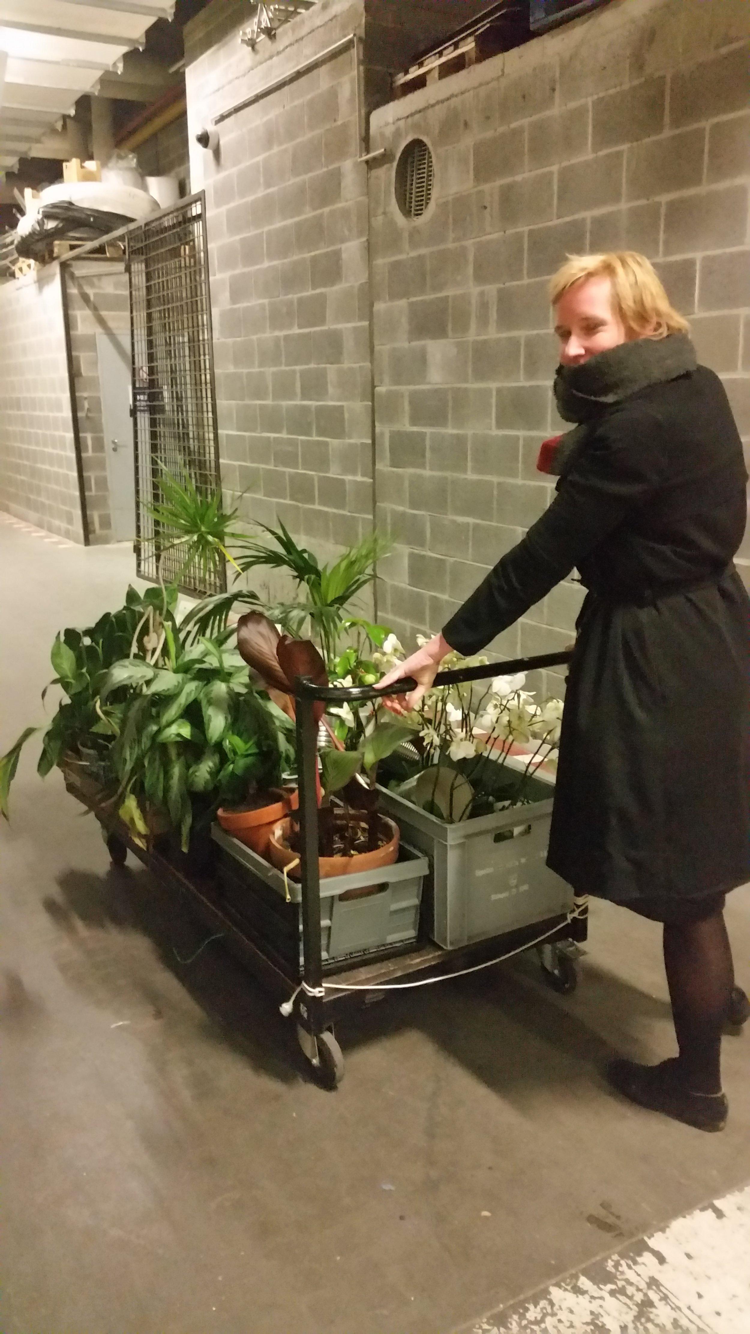 Dékache-pot Het depot voor Verwaarloosde en Overbodige Kamerplanten - Van in het begin een plezier om met de dames van Dékache-pot samen te knutselen, fantaseren en workshops te geven. http://dekachepot.blogspot.com/