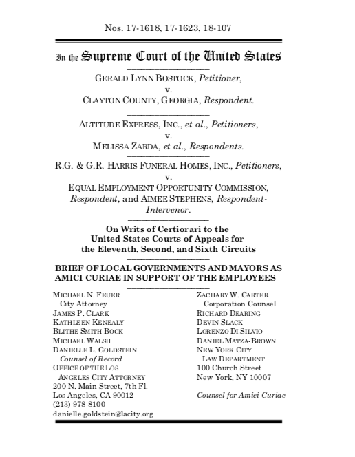 Title VII Amicus Brief (Cover Page).png