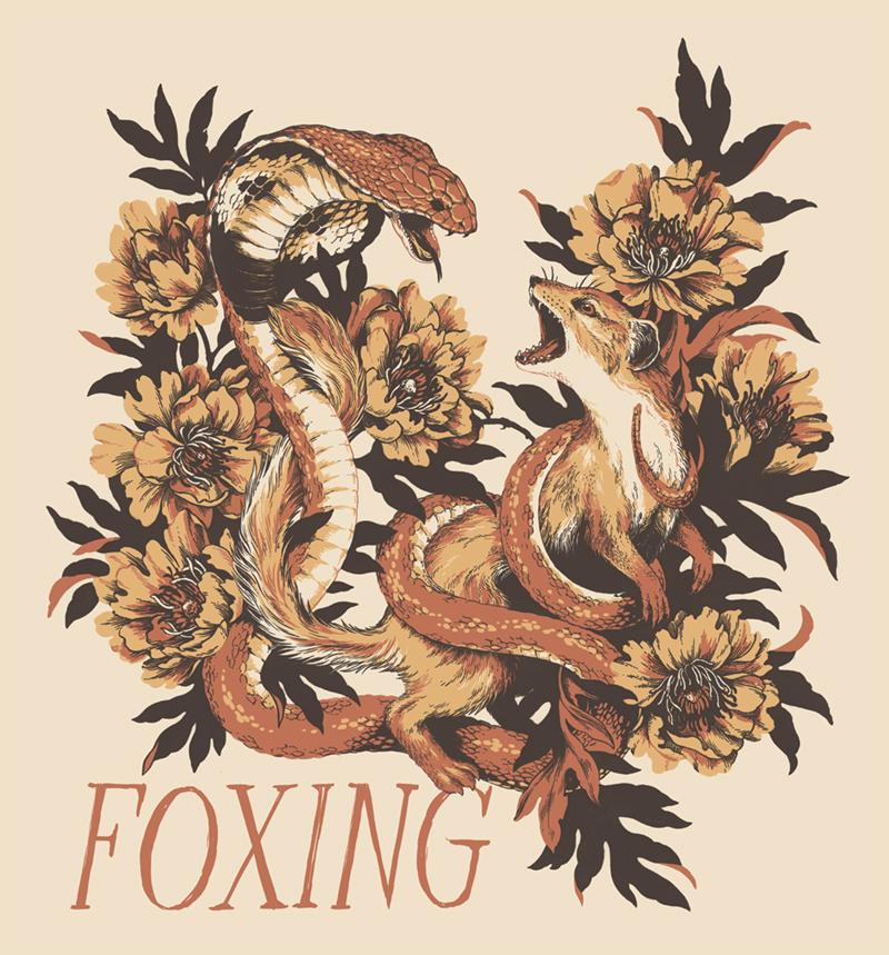 Foxing5.jpg