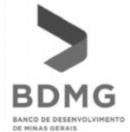 BDMG.JPG