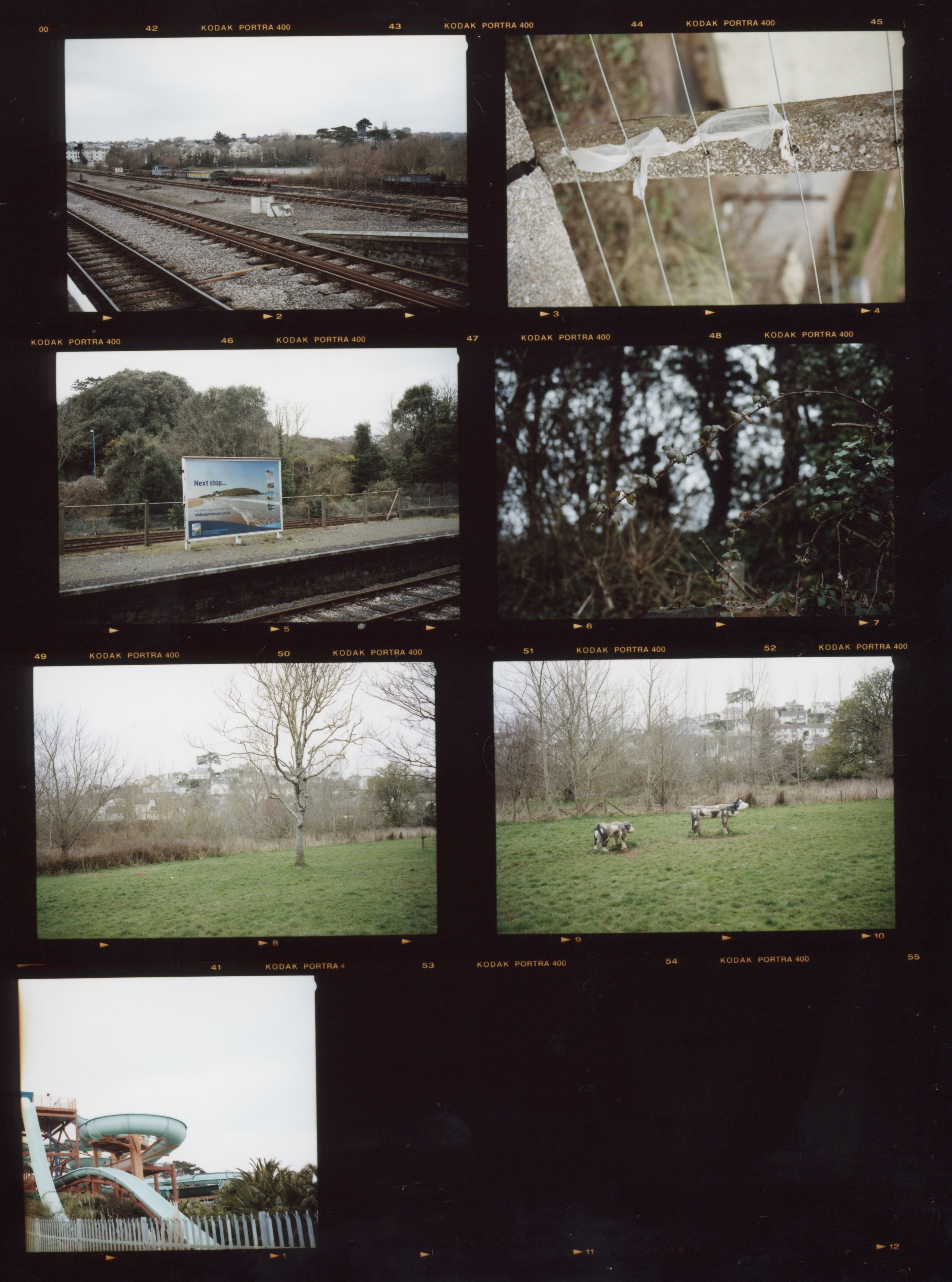 Contact Sheet #2, Anthony Prothero, 2018