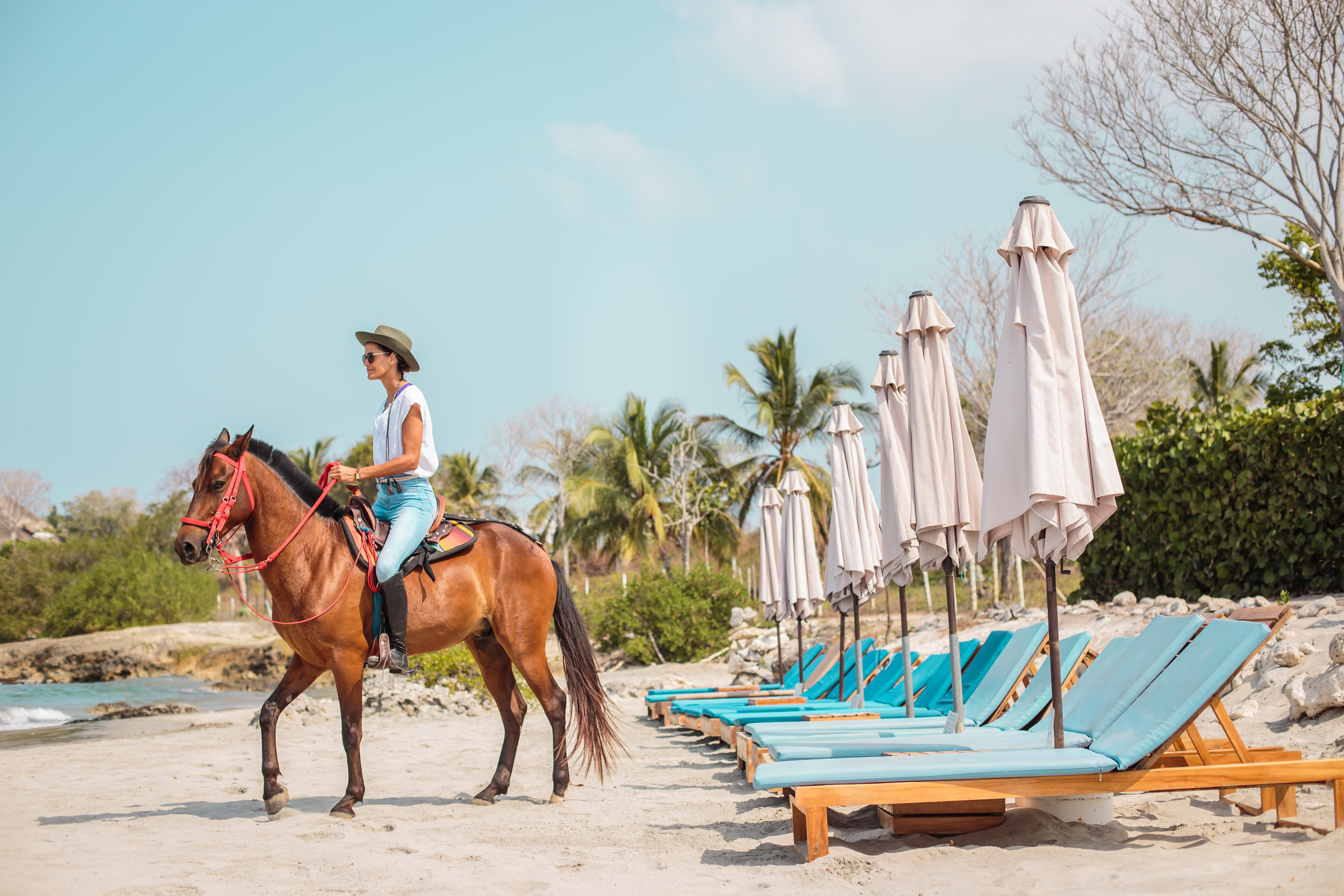 Activities_Horse Riding_Blue Apple Beach.jpg