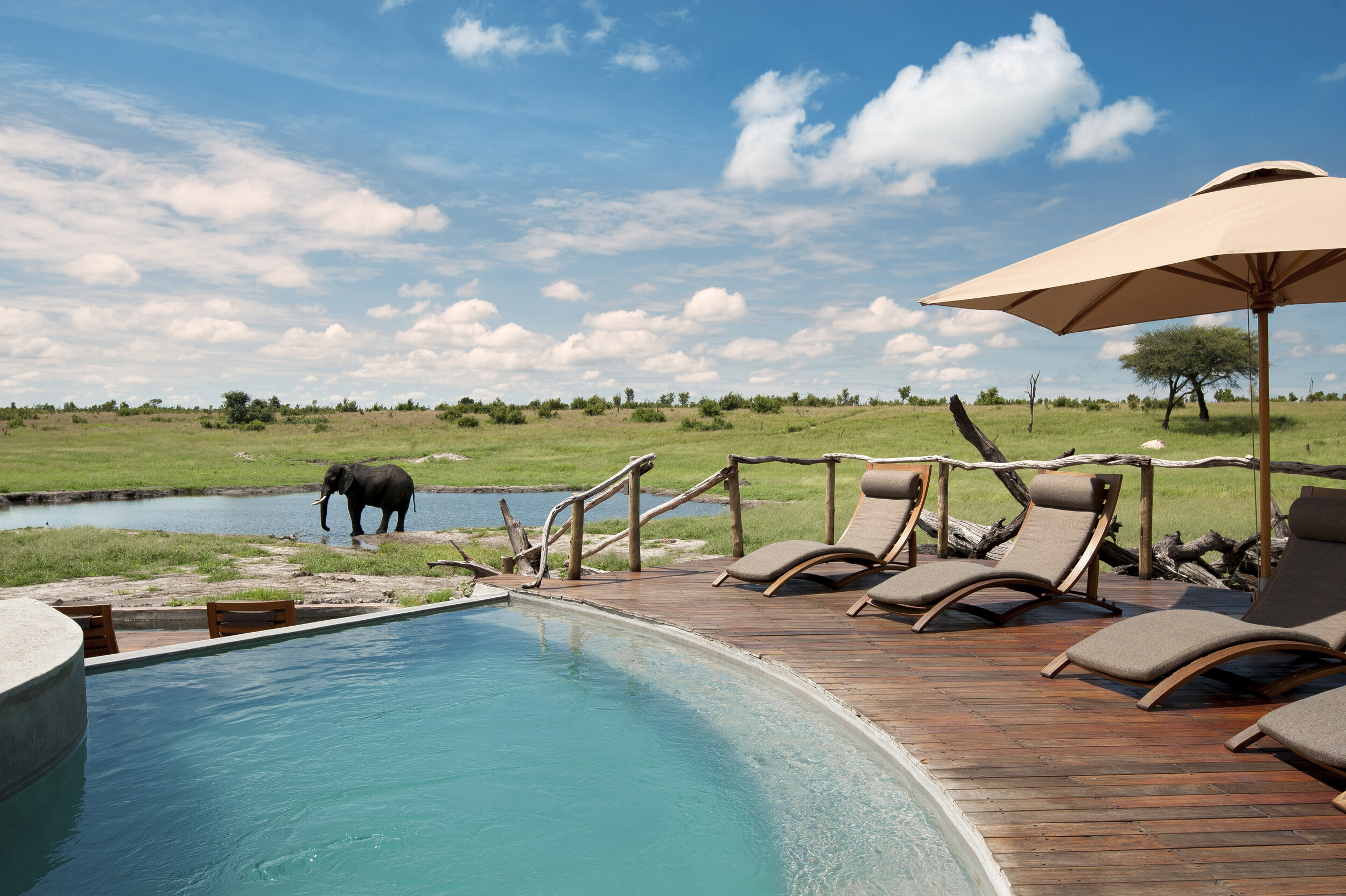 somalisa_camp_hwange_national_park_zimbabwe_luxury_safari_lodge_african_bush_camps_pool_area_5.jpg