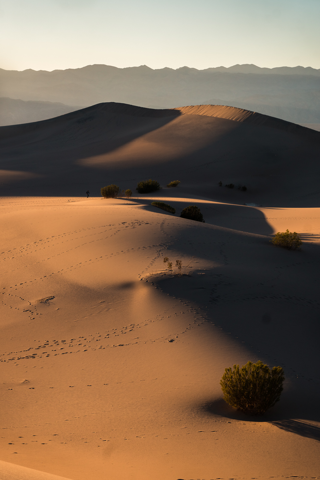 8_Death-Valley-dunes-landscape_Joseph-Barber-Studios.jpg