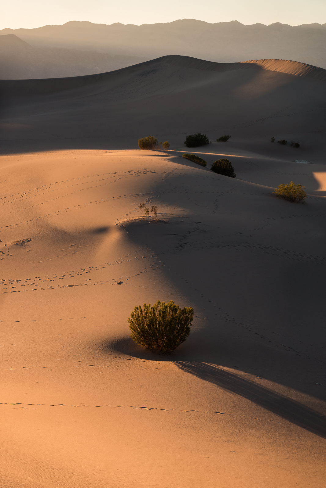 13_Death-Valley-dunes-landscape_Joseph-Barber-Studios.jpg