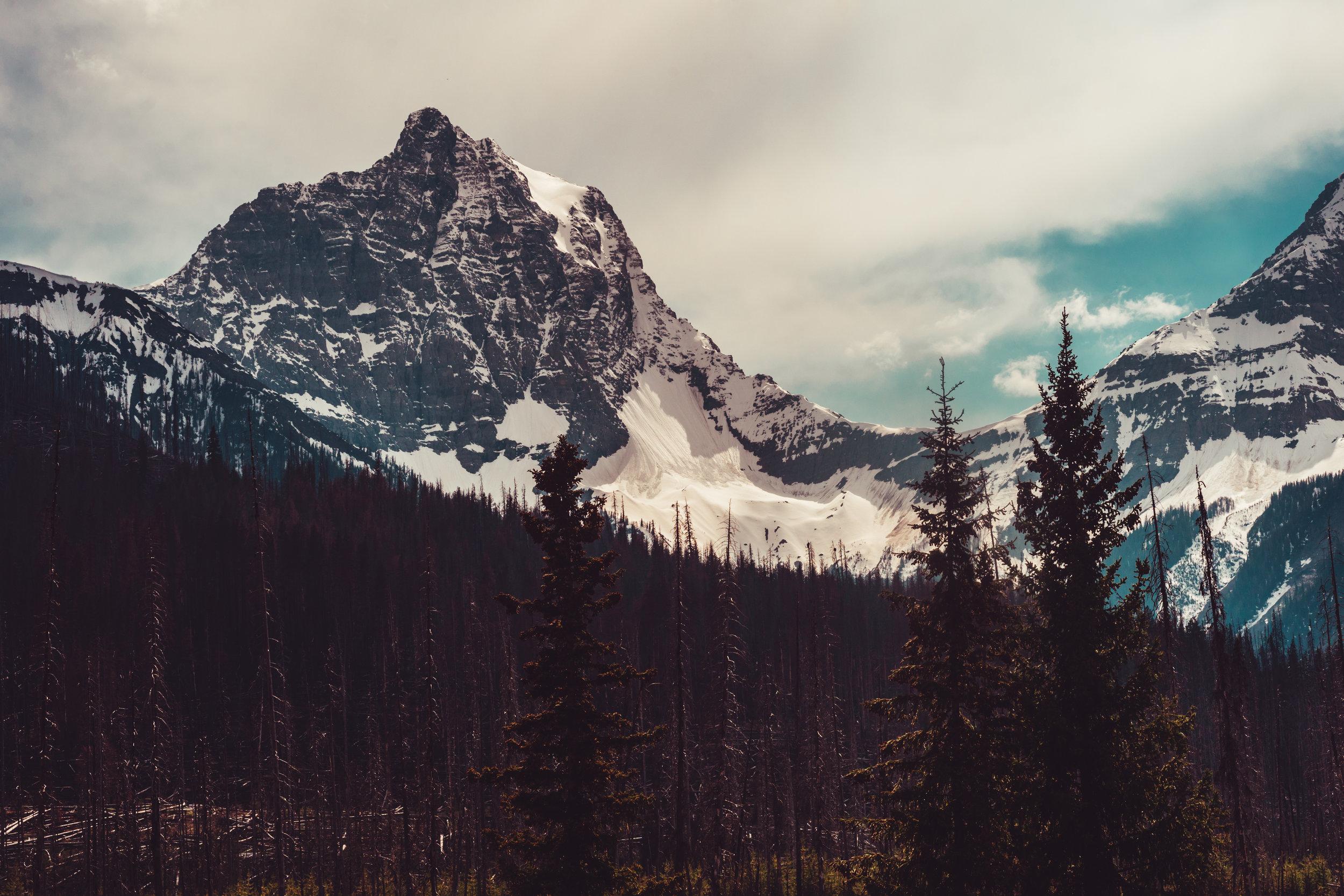 4_Banff-alberta-trip_Joseph-Barber-Studios_00754.jpg