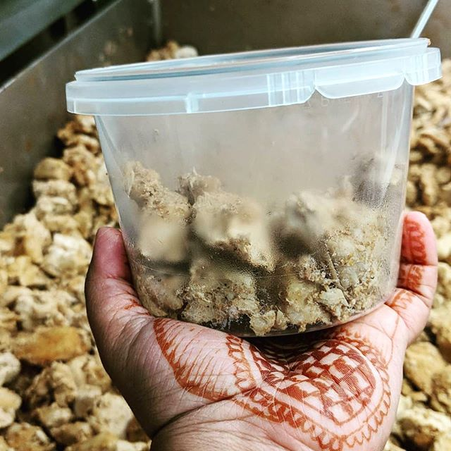 #Repost @minikitchen.ca ・・・ Roasted Coconut Chicken being made! Comfort food to warm you up on this rainy day! They'll be at Baseline Farmers Market ....along with our other die-hard vendors...rain or shine today, 4-8pm. Come support local! ❤️ . . . . . . . . . . #baselinefarmersmarket #strathconacounty #shpk #shpkfood #sherwoodparkmoms #shpkfitness #shoplocalsherwoodpark