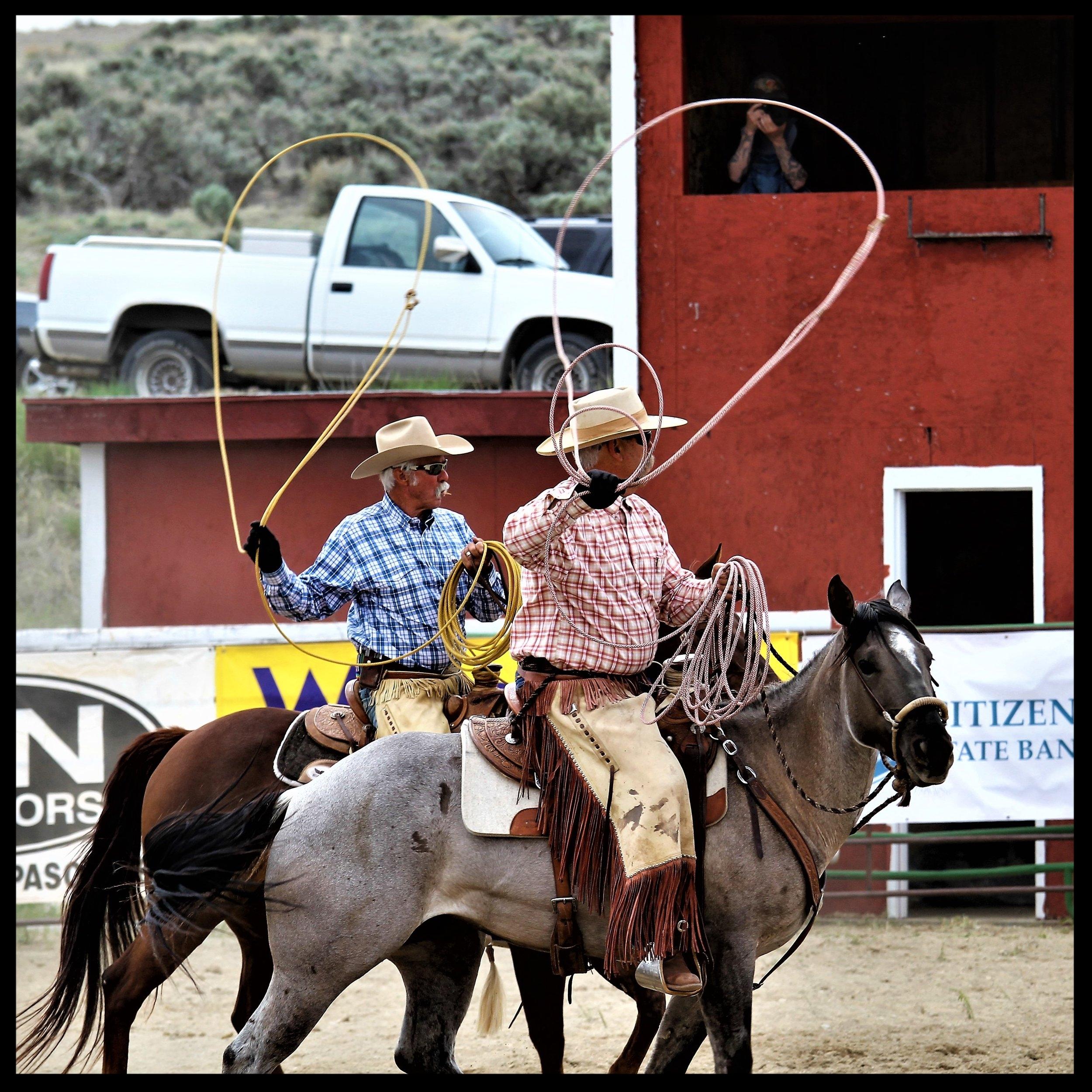 Ranch Roundups -