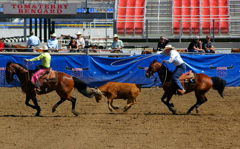 Team Roping Events -