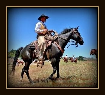 Vaquero Festivals -