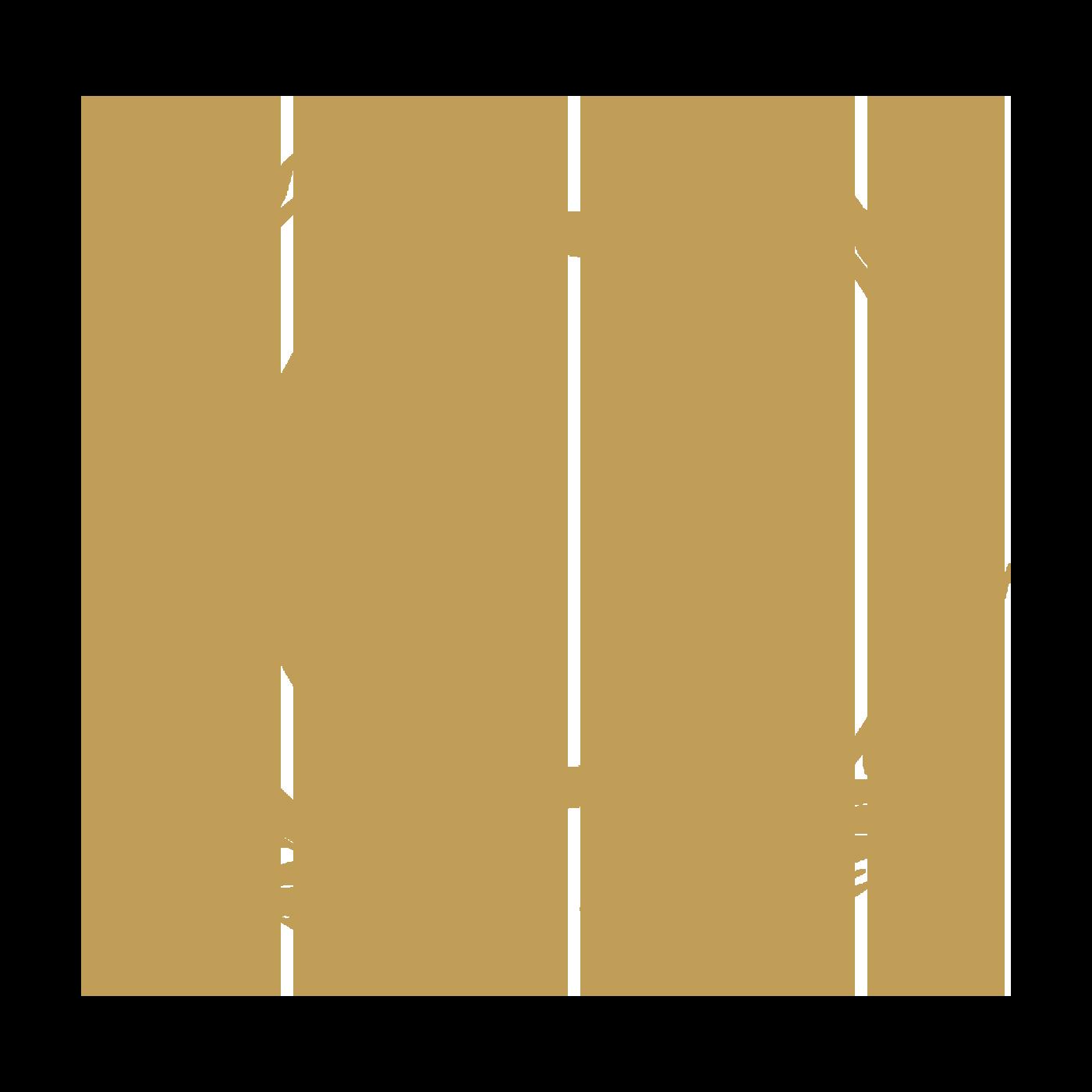 OlyProj_Symbol[V4].png