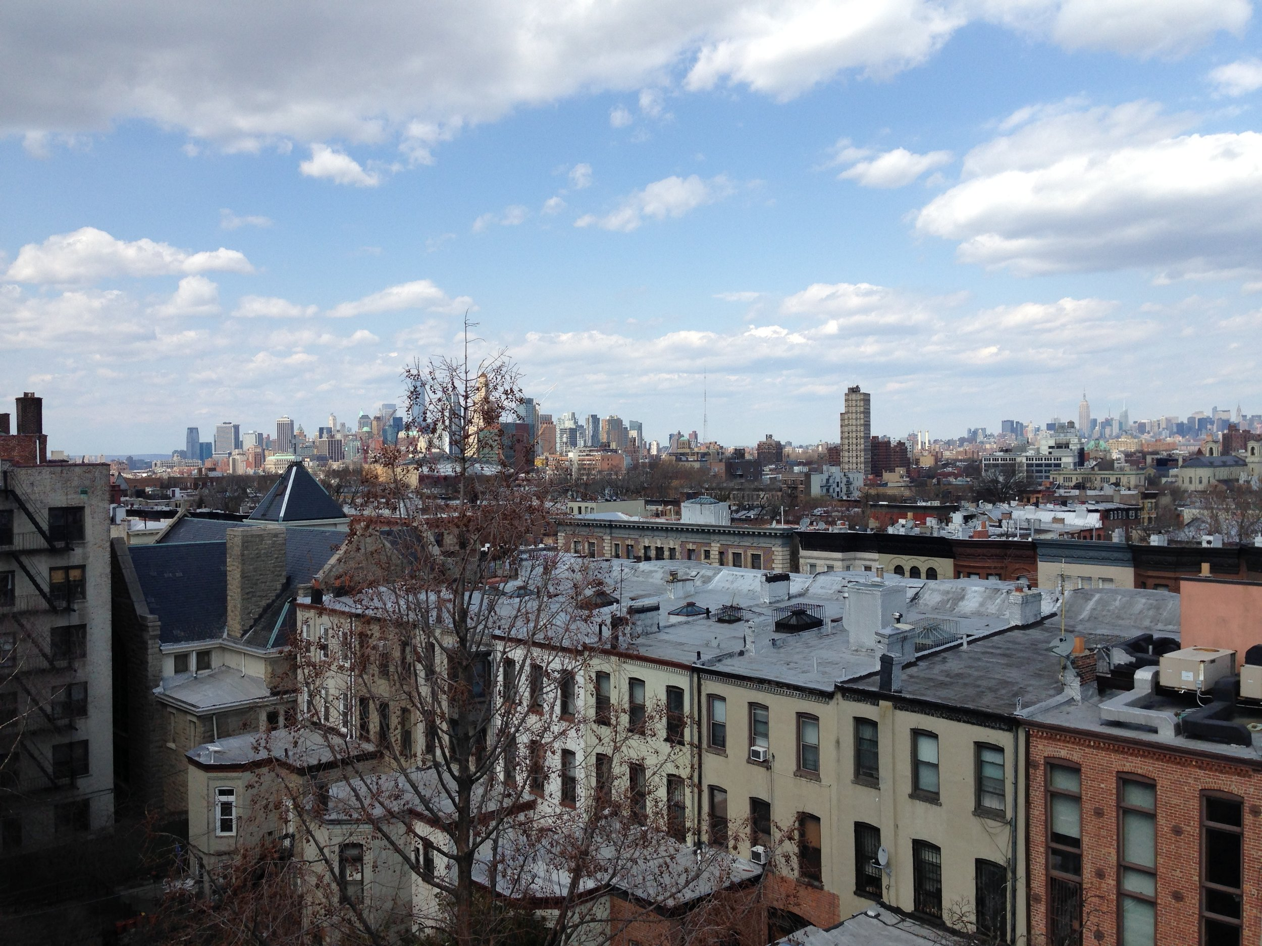 A view from the roof of my apartment in Prospect Heights, Brooklyn