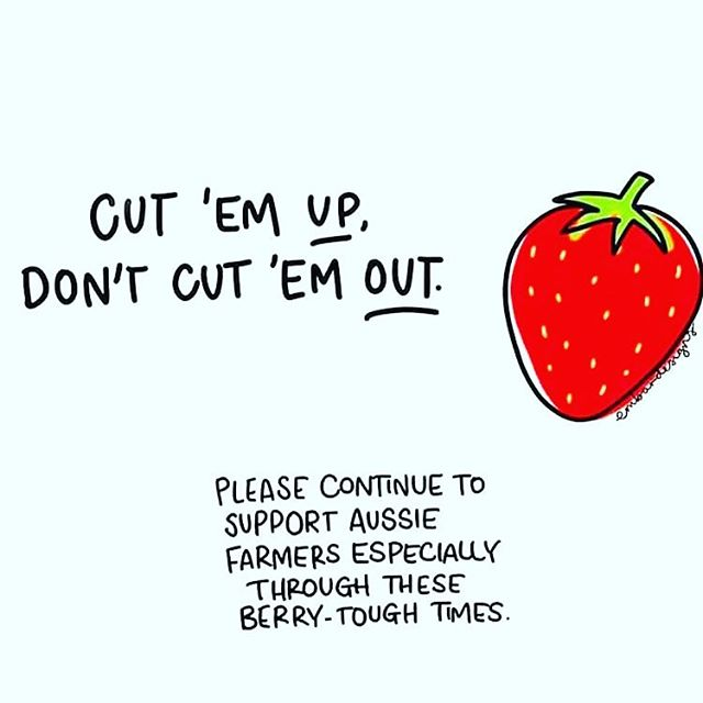 Support our berry special farmers 🍓. Please continue to buy our Australian grown strawberries in a show of support for these farmers and their industry! Ag is an important part of our cultures in Australia so please do you bit and #buylocal. #strawberries #aussieag #agriculture #support #aussiemade @embardesigns great design!