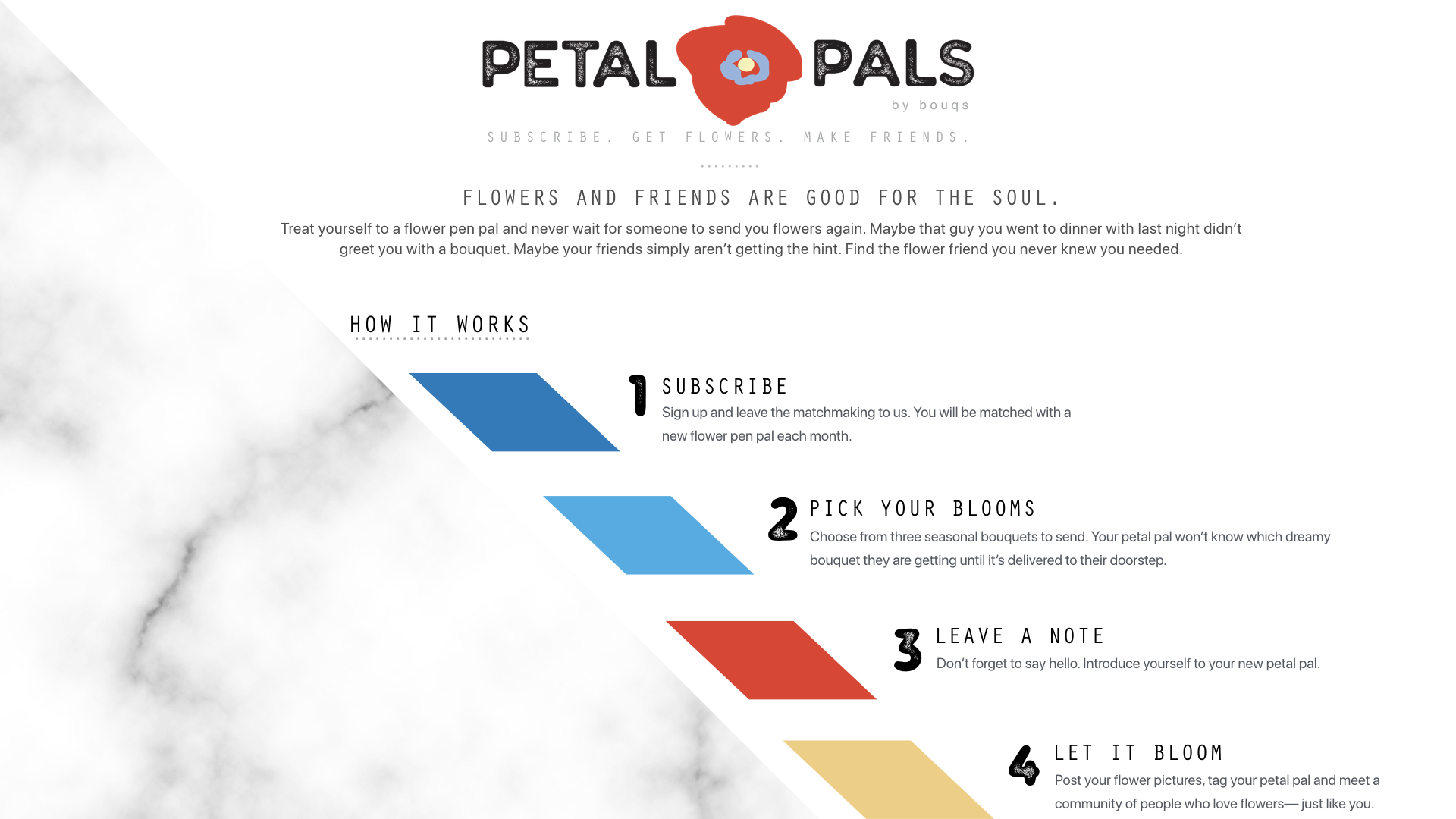 petal+pals.001.jpg