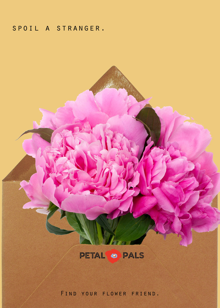 petal-pals-print-1.jpg