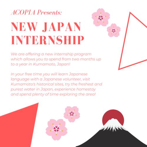 Japan+Internship+insta-2.png