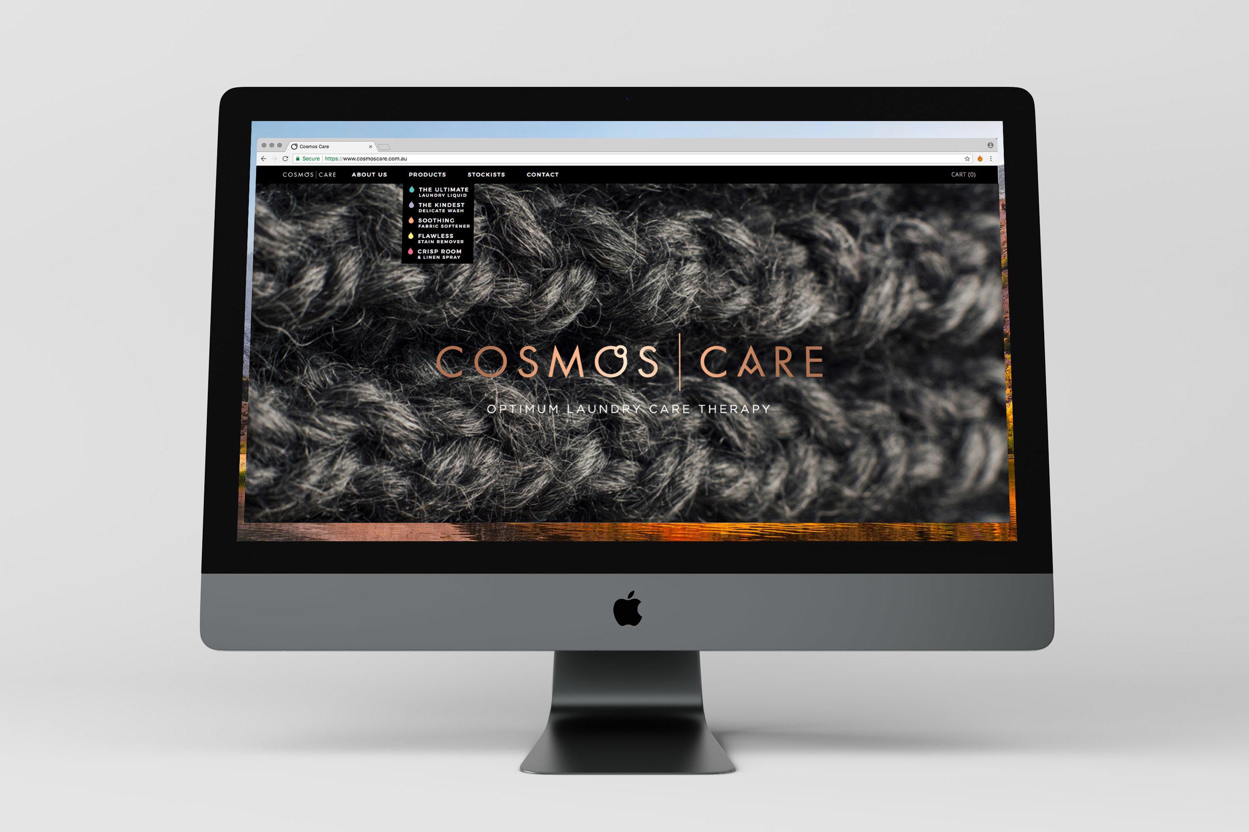 PaintsStudio_WEB_cosmos.jpg