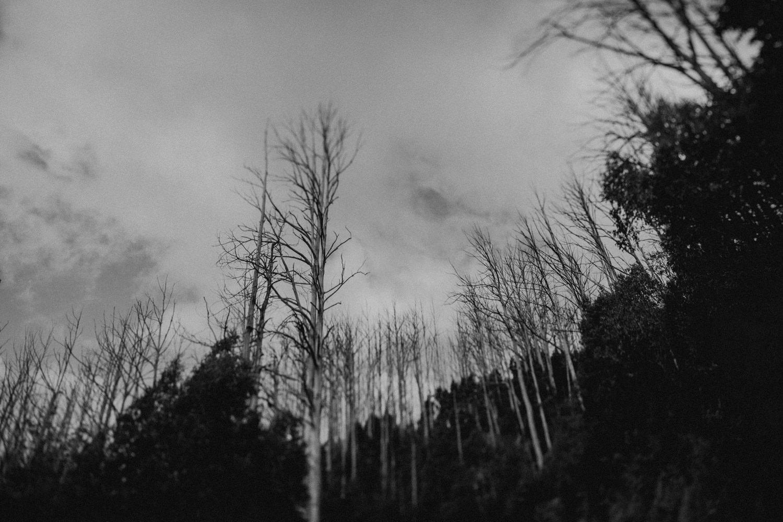 Winter_Elopement_Amie_Nick_Anna_Taylor_081-766A1504.jpg
