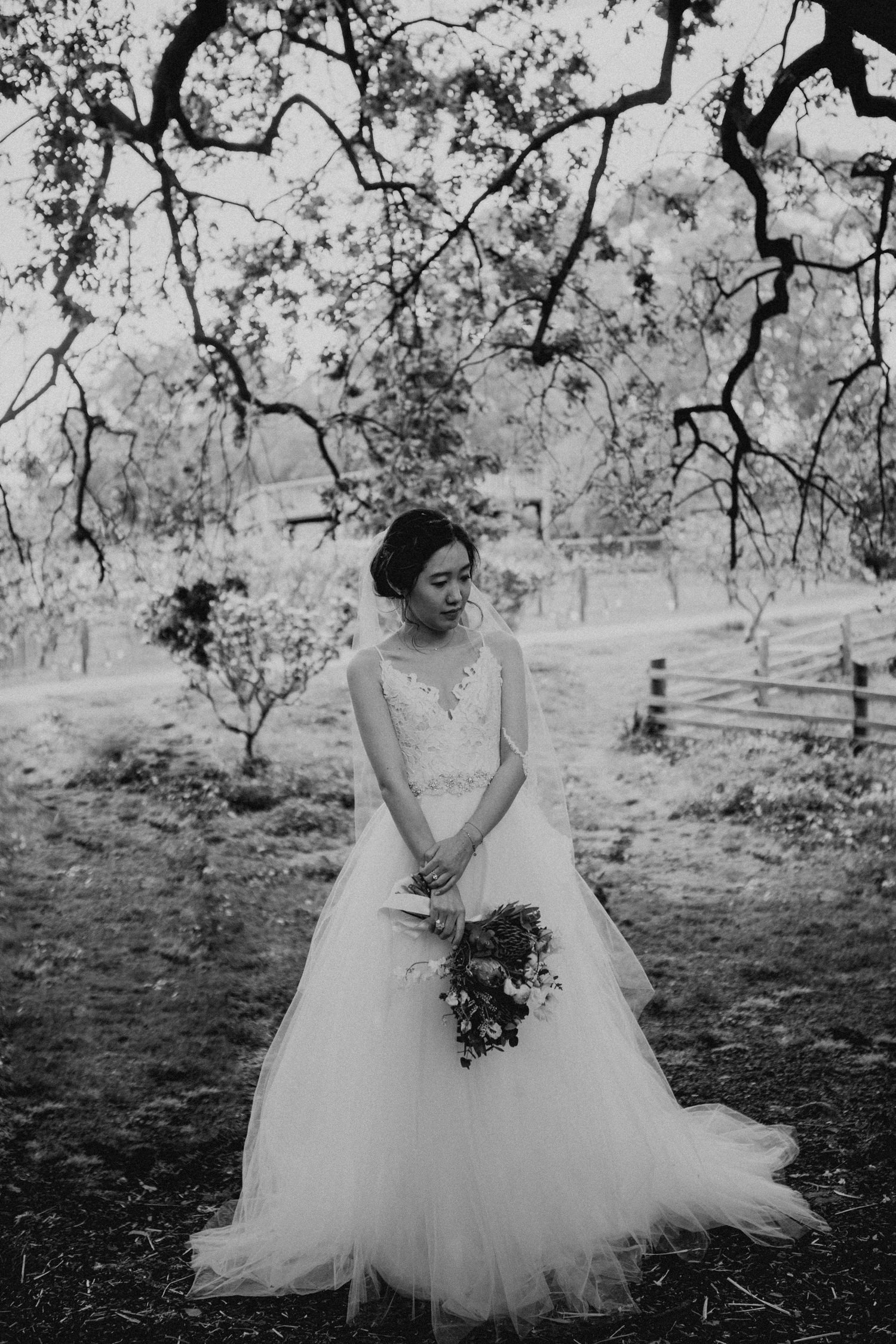 Melbourne_Wedding_Collingwood_Childrens_Farm_Anna_Taylor_051.jpg