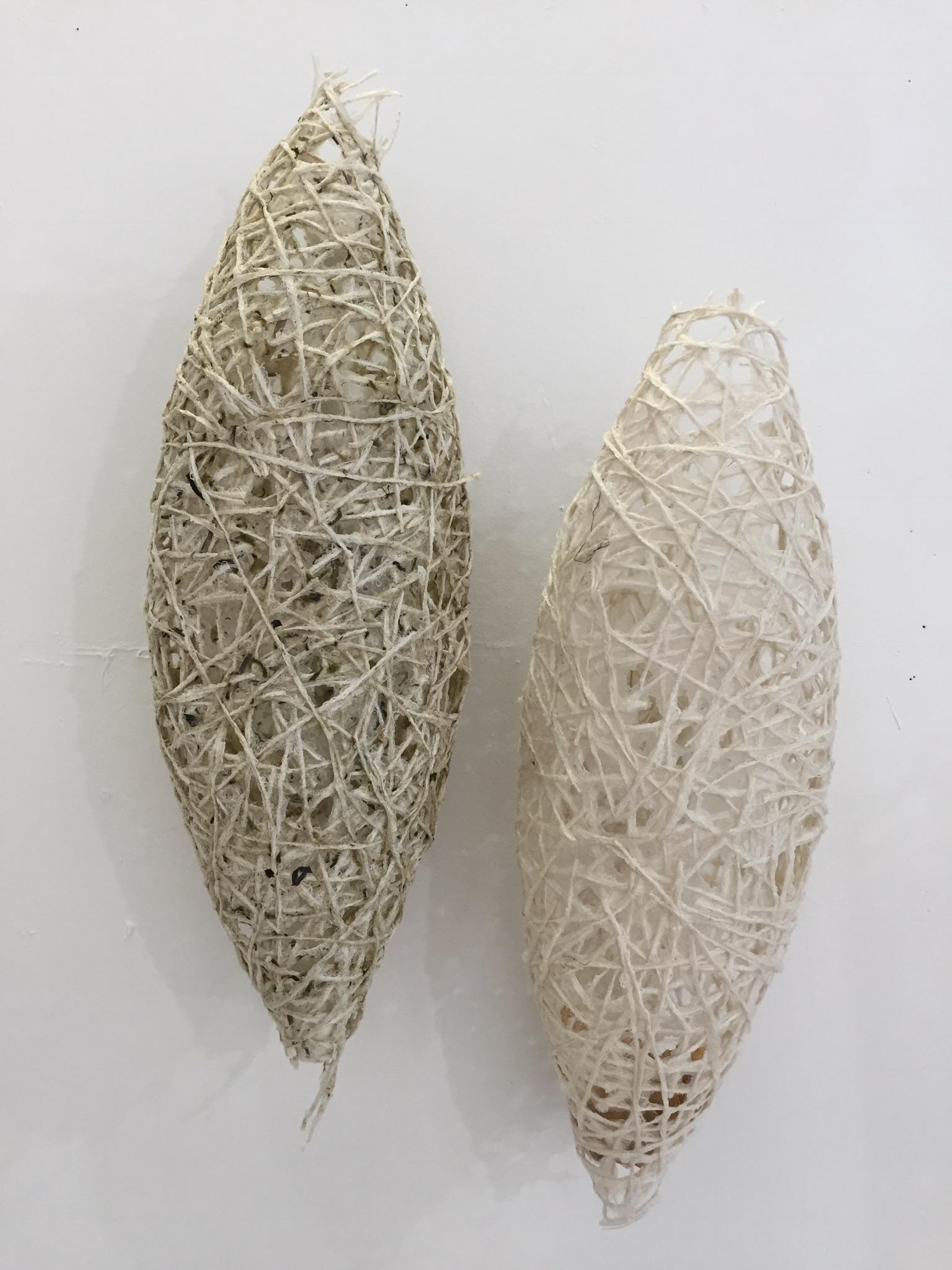 """Cricula"" pods - Mass MoCA artist residency 2017"