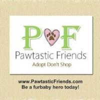 Pawtastic Friends.jpg