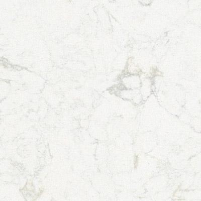 Gorgeous Carrara Quartz in every home!