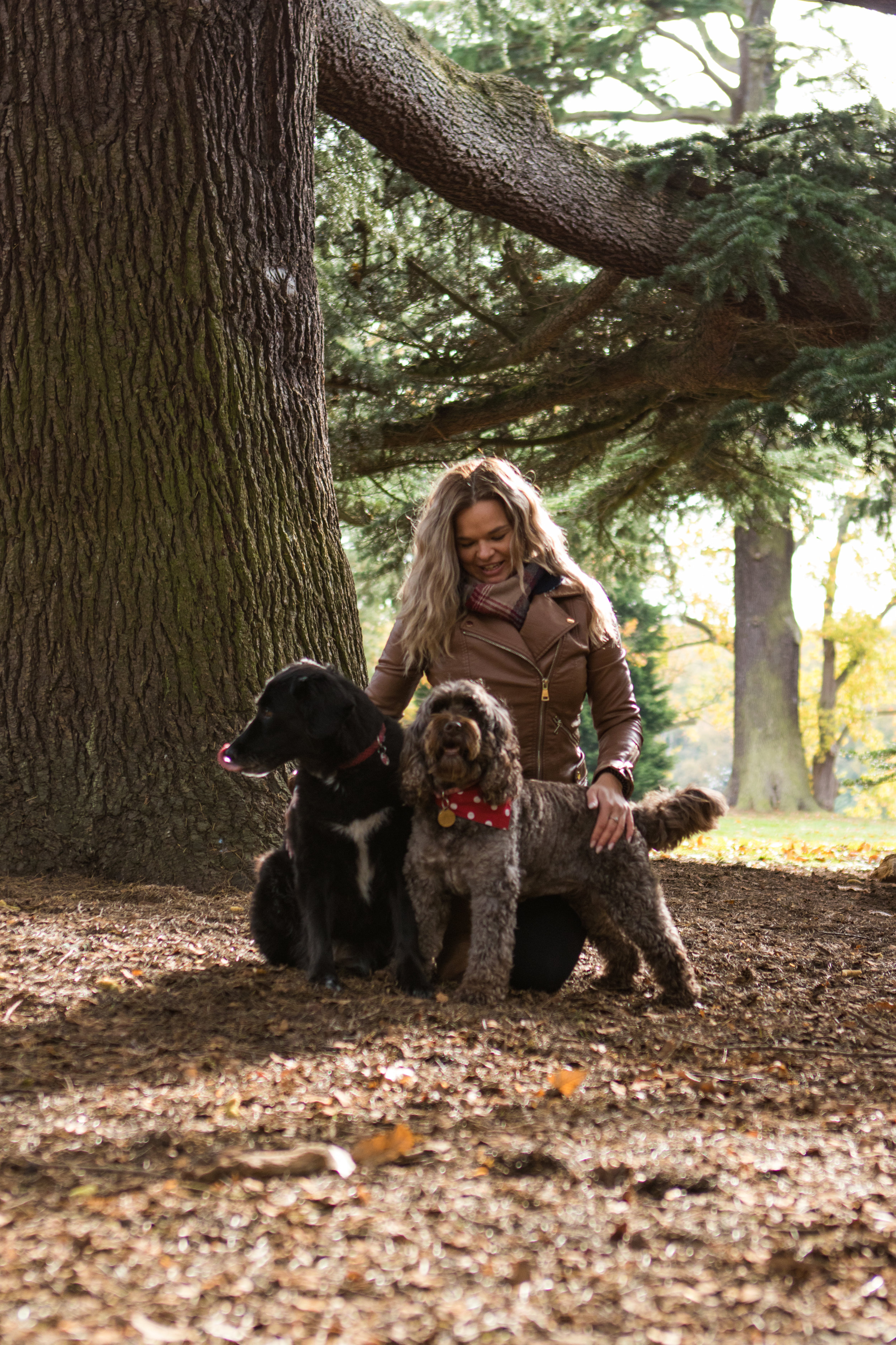 - We have a 100ft garden, where playtime is guaranteed after every groom                     - We're trained in doggy first-aid so your dog will always be in good hands               -