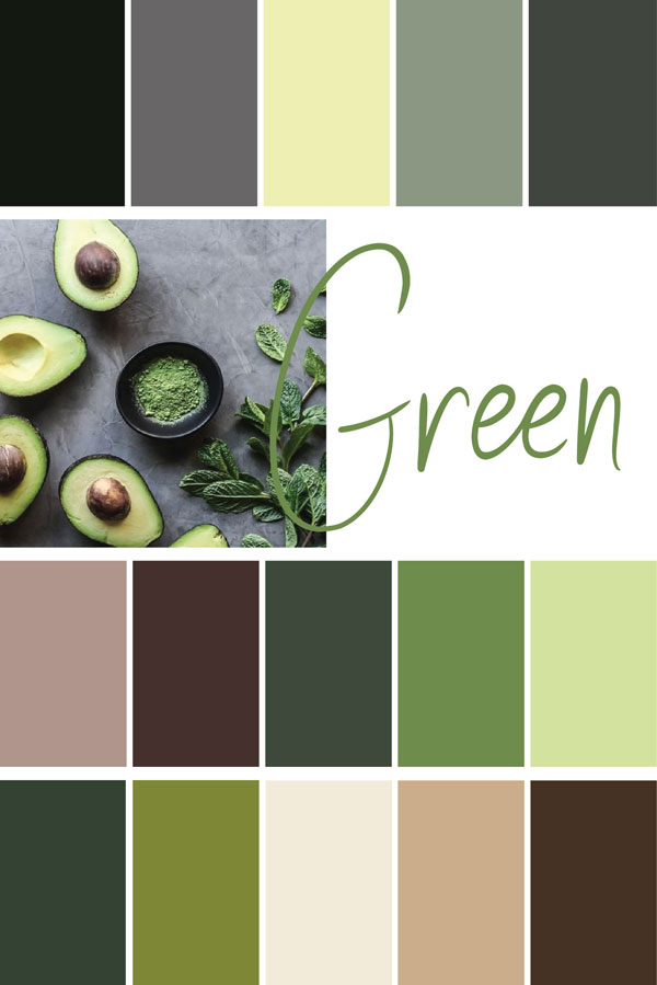 Color-Palettes Examples | MNFL Design
