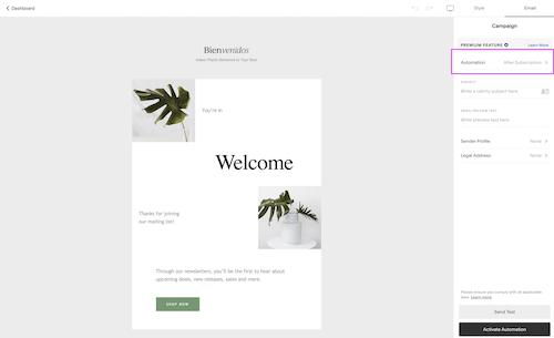 Squarespace Campaigns Automation | Emilia Ohrtmann