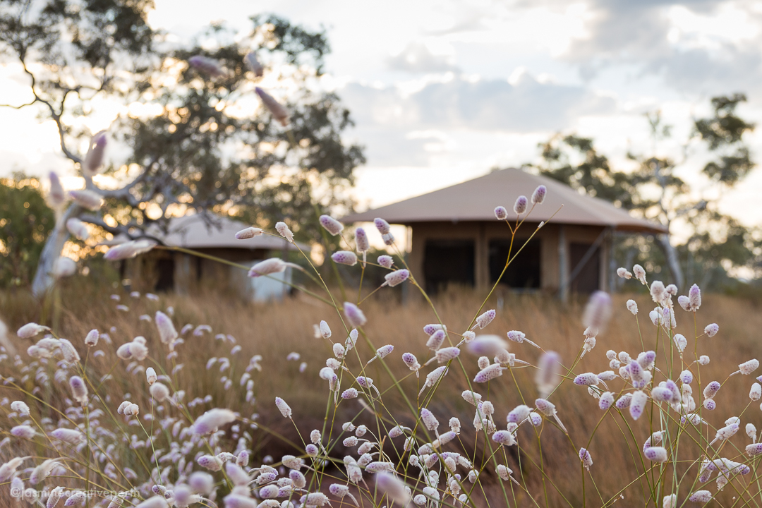 gepl gumala karijini eco retreat tourism photography australia (16 of 48).jpg