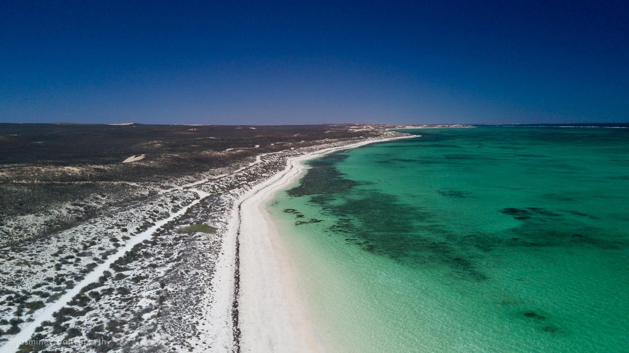 waroora station ningaloo coral bay beach ocean aerial landscape photography jasmine creative body perth (4 of 4).jpg