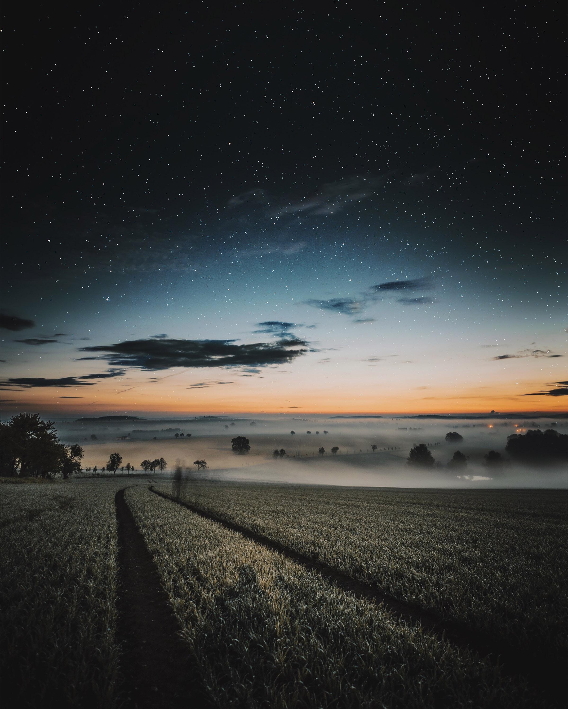 Maximilian_Otto_Natur_16.jpg