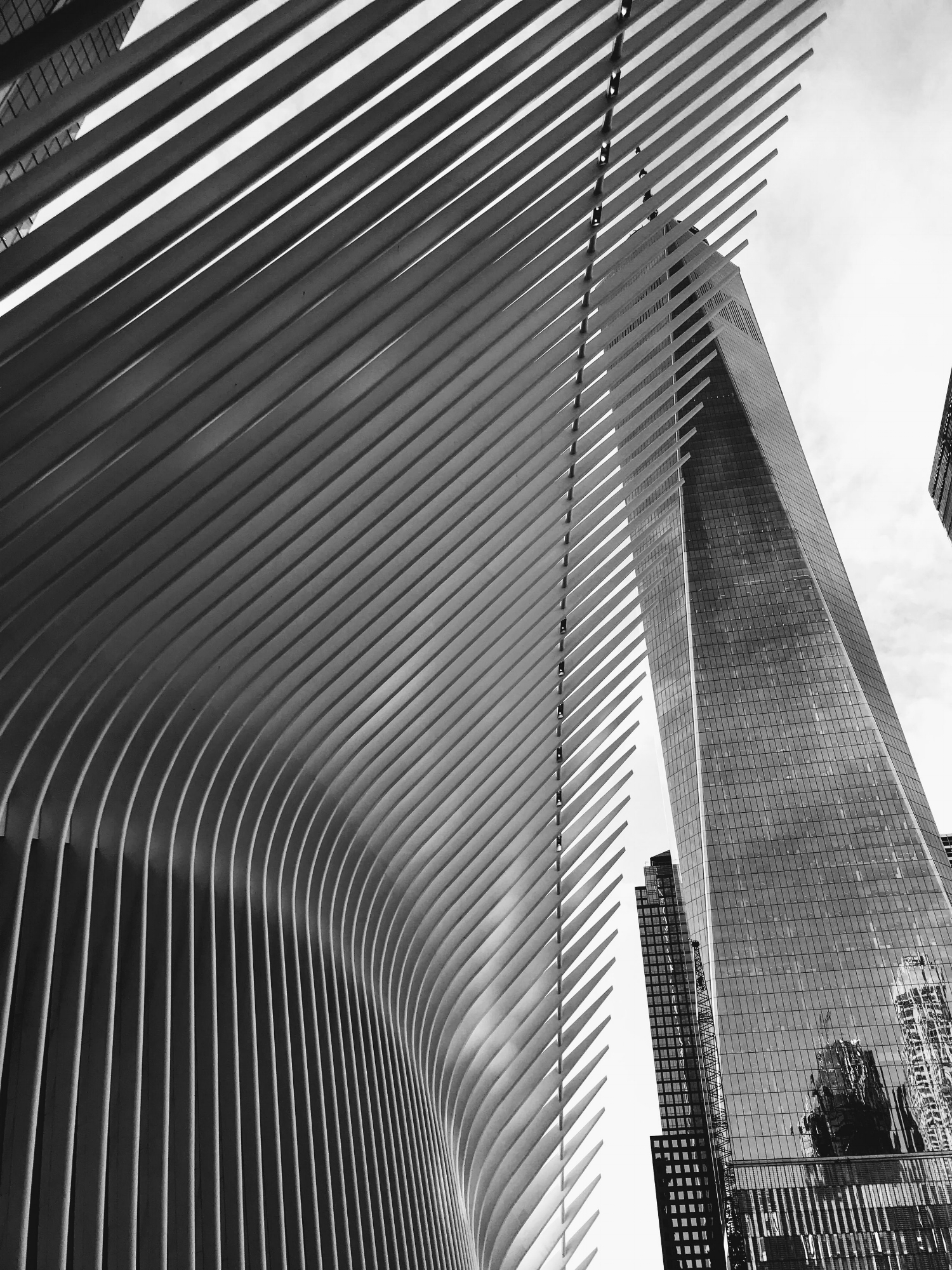 Outside the Oculus, in the shadow of the Freedom Tower.