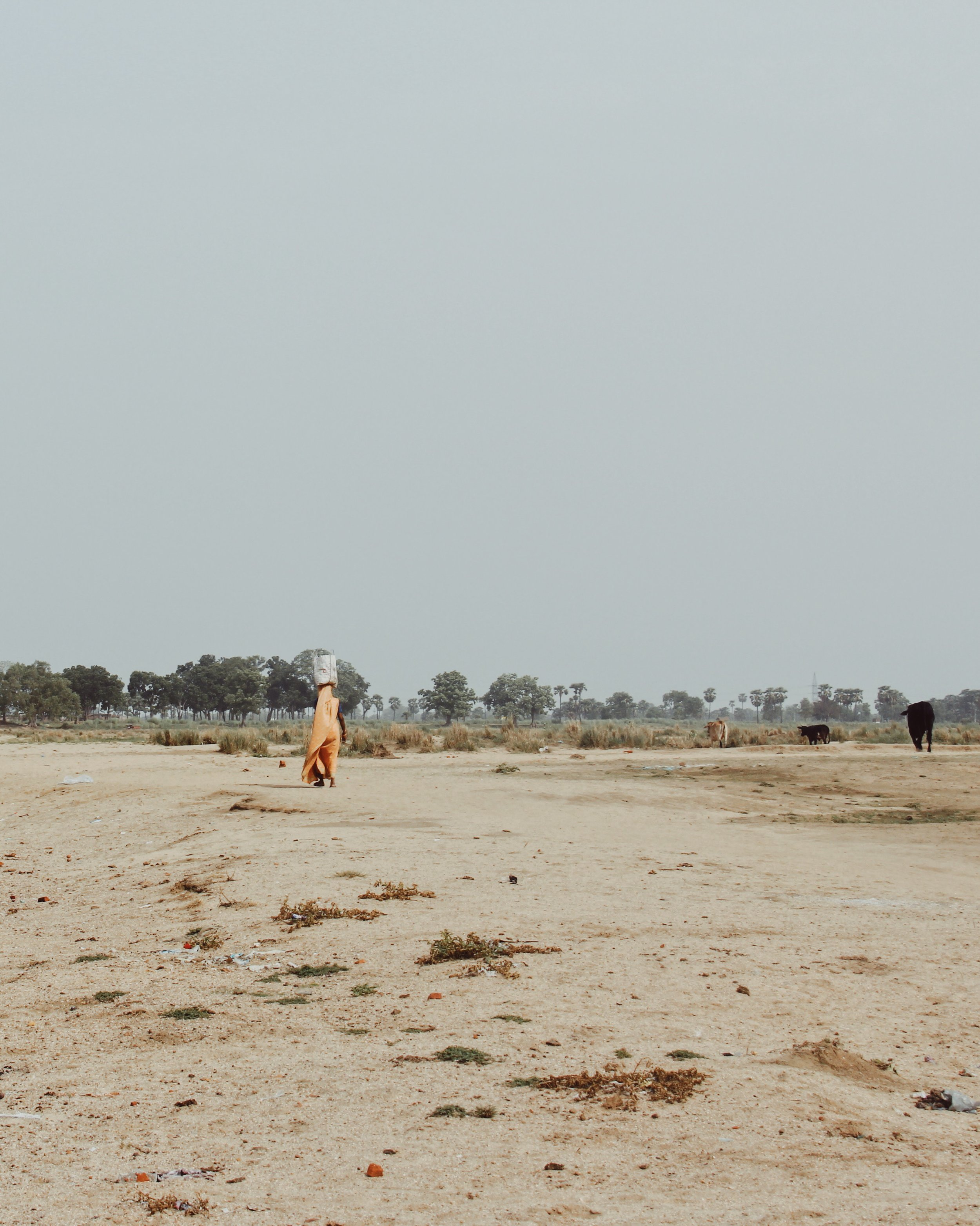 Crossing the dried up river bed of the Phalgu river in Bodh Gaya.