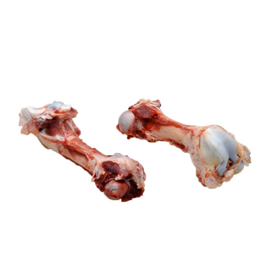 Femur Bones.jpg