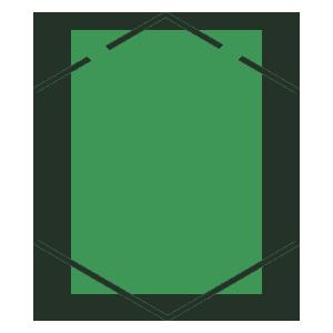 termite prevention & treatment orlando fl