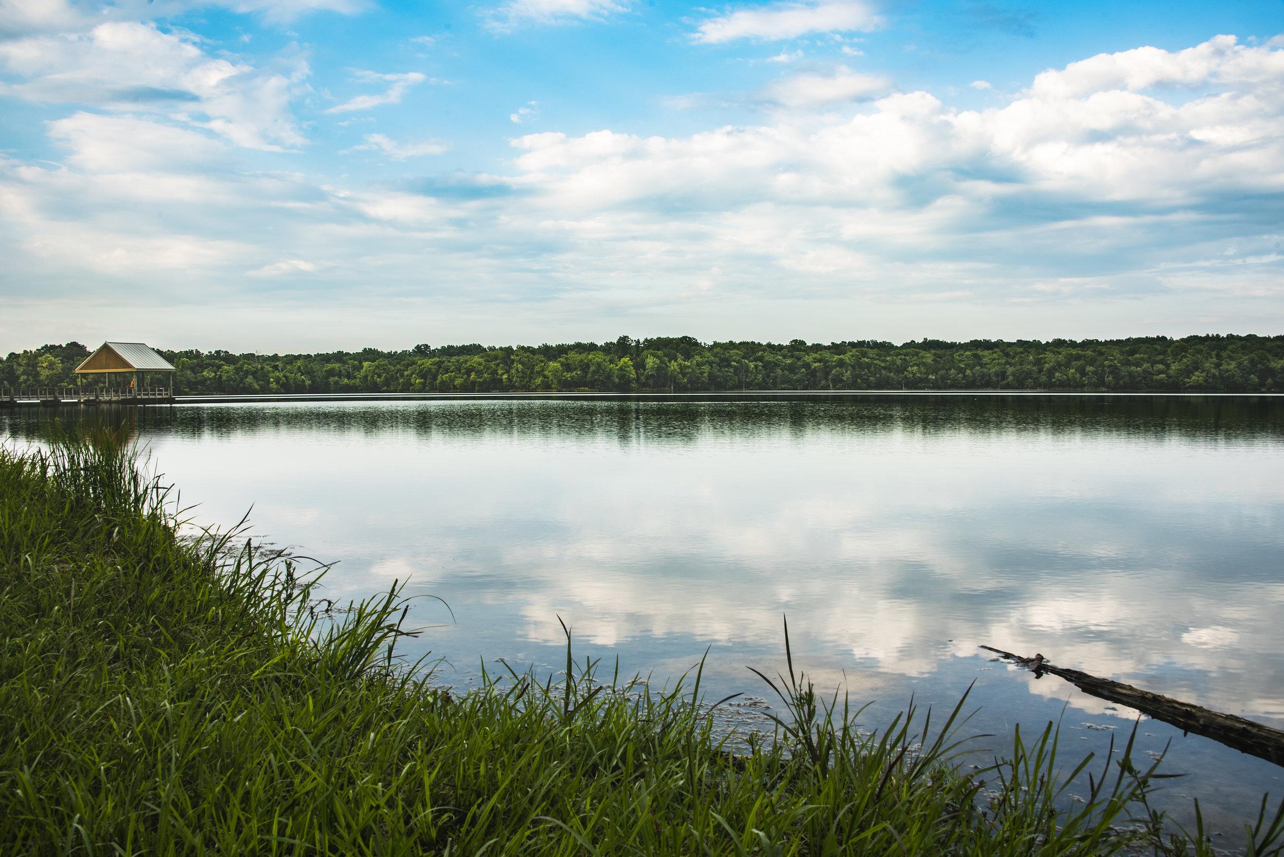 2018B_Landscape_Longhunterstatepark_Hcolburn.jpg